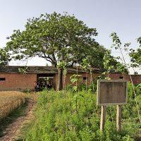 譙陵寺遺址